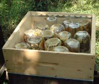 Récolte du miel avec système ARSAPI 4