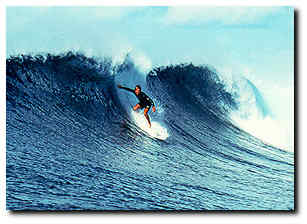 Surf (1778) 4