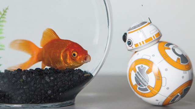 bb8-robot-droide-star-wars