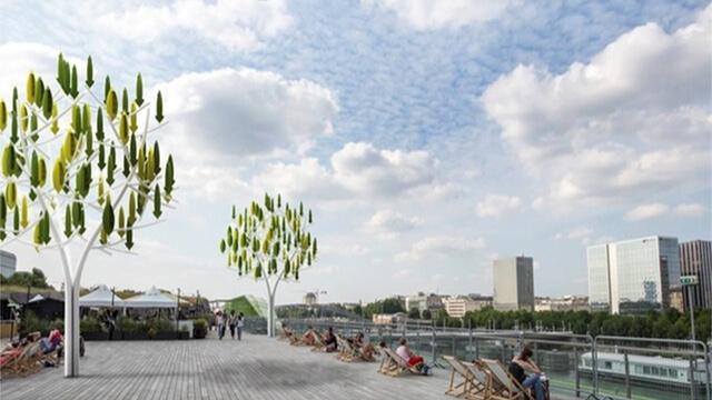 Arbre à vent : ses mini-éoliennes produisent de l'électricité 1