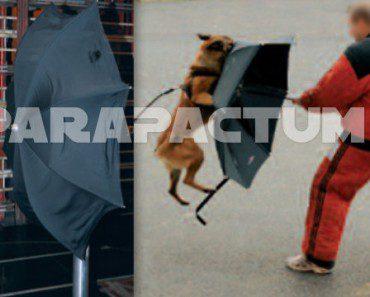Parapactum : parapluie de protection 2