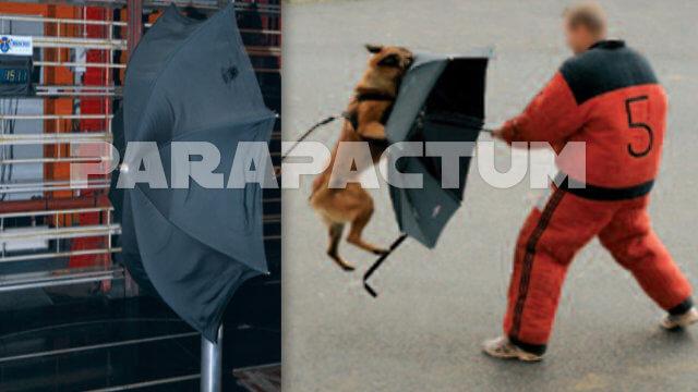 parapactum-parapluie-de-protection